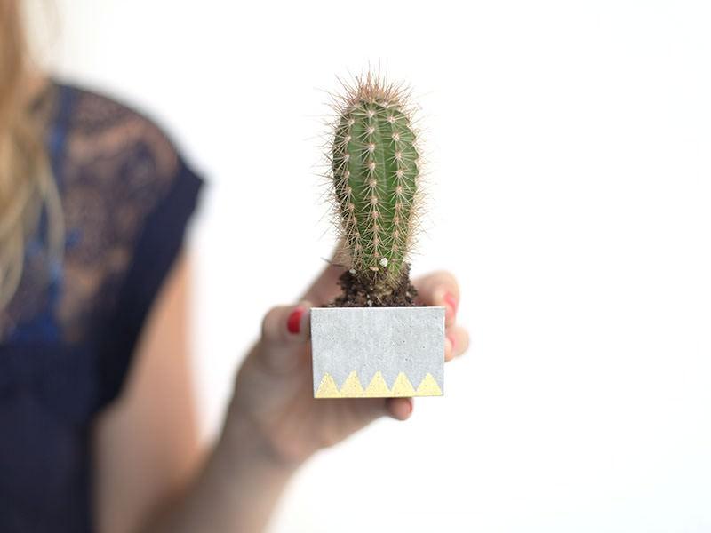 Le pot à cactus en béton