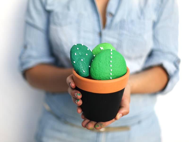 Les cactus éternels