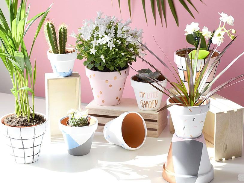 Les pots de fleurs graphiques