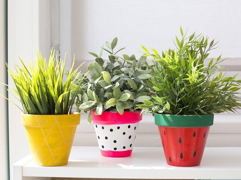 Les pots de fleurs tropicaux