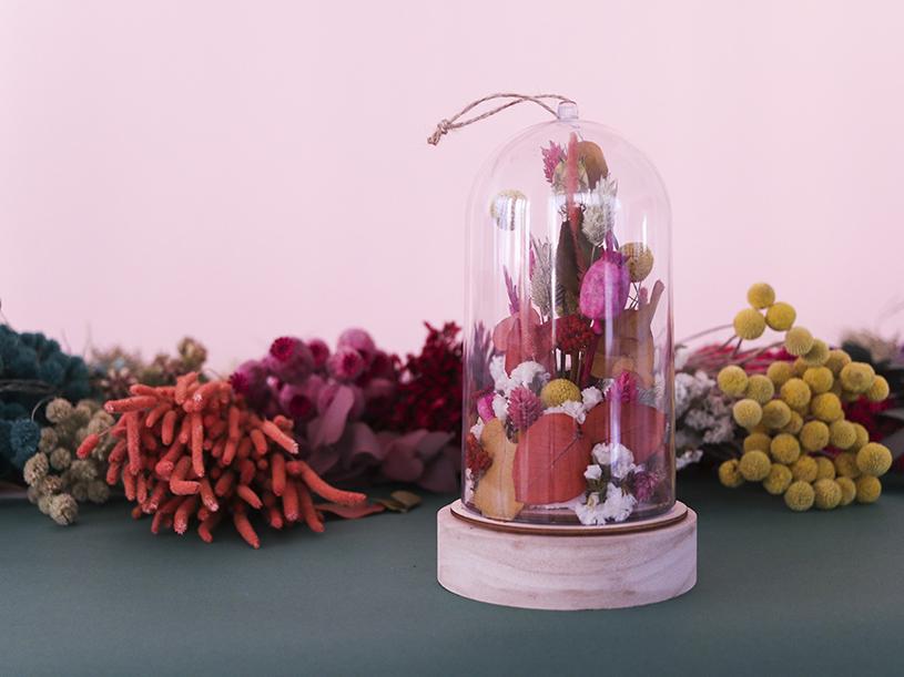 Les fleurs séchées sous cloche