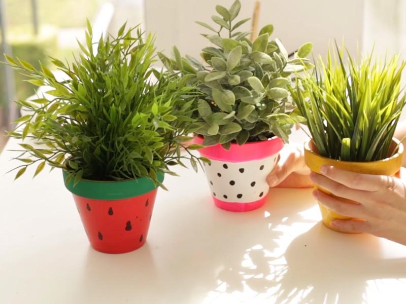 Ajouter des petites plantes dans les pots.