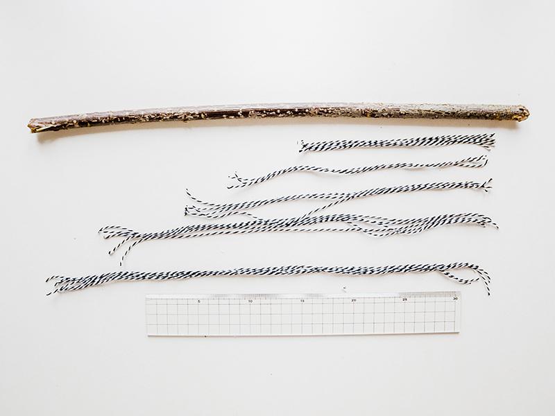 Prenez une branche d'au moins 25 cm et découpez 25 fils de tailles différentes.
