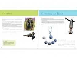 Livre pâte polymère - Design et couleurs