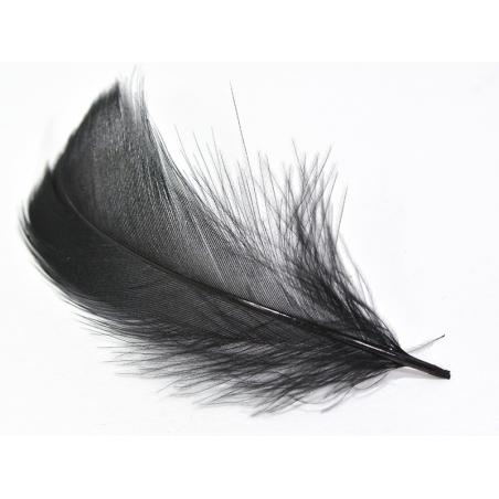 Acheter Plume noire - fournitures loisirs créatifs et DIY - 0,29€ en ligne sur La Petite Epicerie - 100% Loisirs créatifs