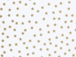 8 assiettes en papier - étoiles dorées