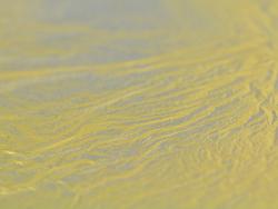 Métal en feuilles - or