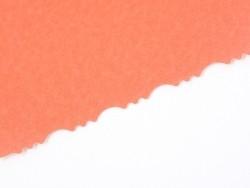 Ciseaux cranteurs  - ANTIQUE Rico Design - 3