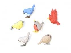 Plastic button - Birds