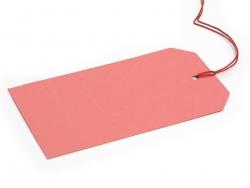 Acheter 12 attaches / étiquettes cadeaux - multicolore - 5,50€ en ligne sur La Petite Epicerie - 100% Loisirs créatifs