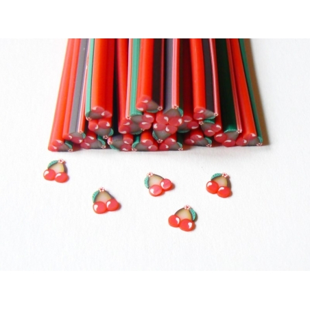 Cherries and flower cane