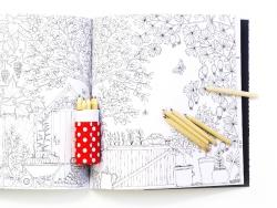 """Französisches Buch """" Jardins Secret, carnet de coloriage & chasse au trésor antistress"""""""