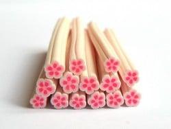 Cane paquerette rose et blanche