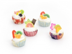 Lot de 5 cupcakes miniatures