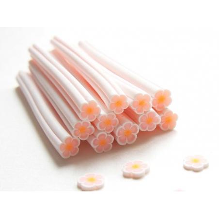 Cane paquerette blanche et orange pâle  - 1