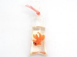 Hübscher Fisch in einem Plastikbeutel