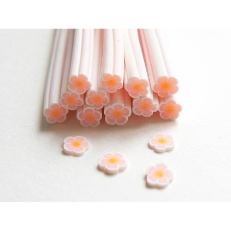 Cane paquerette blanche et orange pâle  - 2