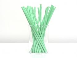 25 Papierstrohhalme - grün