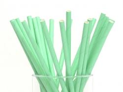 25 Pailles en papier - vertes
