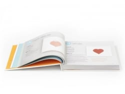 Livre Petites créations faites maison - 350 idées faciles,rapides et si migonnes !