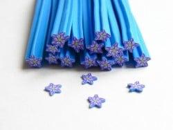 Blumencane - blau, sternenförmig