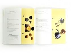 Livre Grigris en pâte polymère - 3e édition