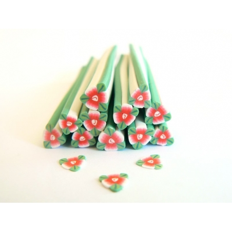 Flower cane - red with leaves
