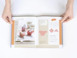 Livre - Origami - Catherine Guidicelli