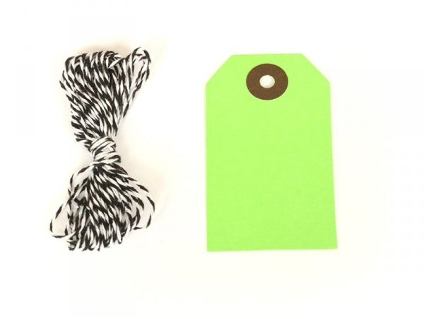 20 rectangular gift tags and a cord - apple green
