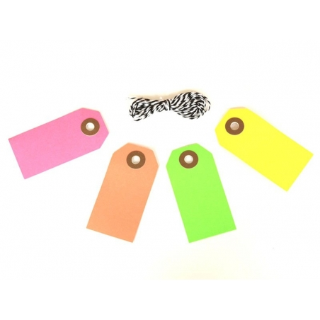 10 rectangular tags and a cord - neon pink