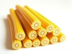 Sonnenblumencane