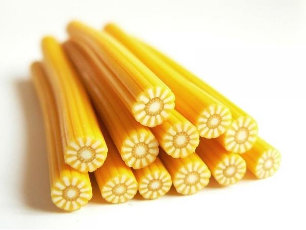 Sunflower cane