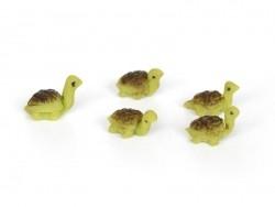 1 miniature tortoise