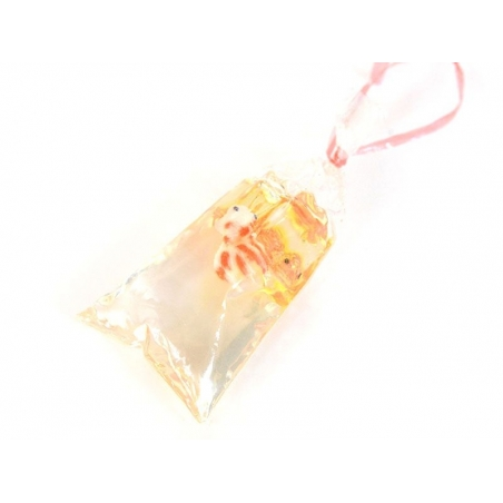 A lovely fish in a bag - Size S