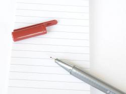 stylo biseauté 0,3 mm - Carmin