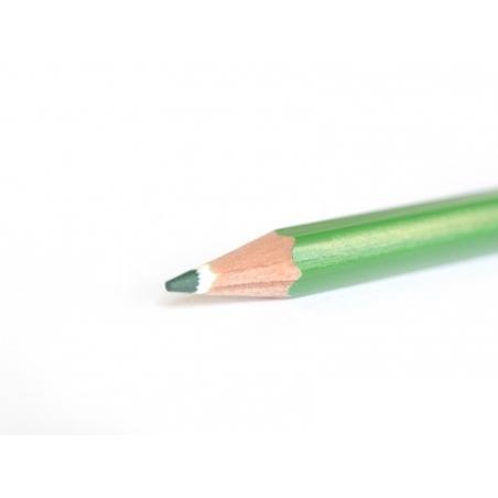 Crayon de couleur - Vert foncé Staedtler - 2