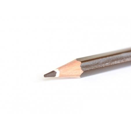 Acheter Crayon de couleur - Marron - 3,80€ en ligne sur La Petite Epicerie - 100% Loisirs créatifs