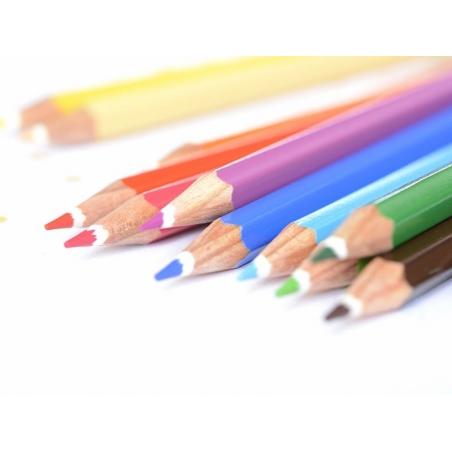 Acheter 12 Crayons de couleur aquarellables + pinceau - 5,80€ en ligne sur La Petite Epicerie - 100% Loisirs créatifs