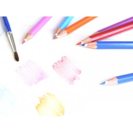 Acheter 36 Crayons de couleur aquarellables + pinceau - 19,90€ en ligne sur La Petite Epicerie - Loisirs créatifs