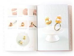 "French book "" Gourmandises de rêves en pâte fimo de Xi Lu"""