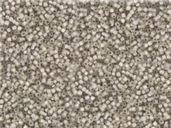 Tube de 1100 rocailles - Miyuki Delicas 11/0 - Gris taupe 1456