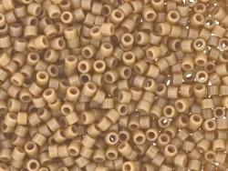 Tube de 1100 rocailles - Miyuki Delicas 11/0 - Marron clair 2105