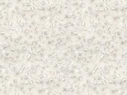 Tube de 1100 rocailles - Miyuki Delicas 11/0 - Blanc brillant 201