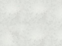Röhrchen mit 1.100 Rocailleperlen - Miyuki Delica's 11/0 - mattweiß, Nr. 741