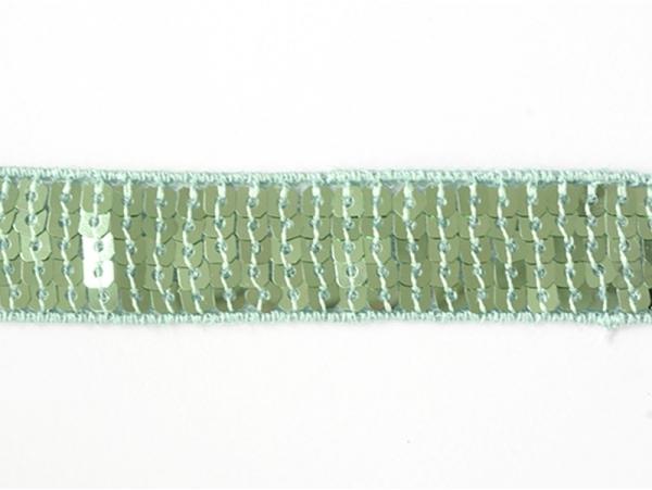 1m de galon à sequins 22mm - Vert 010