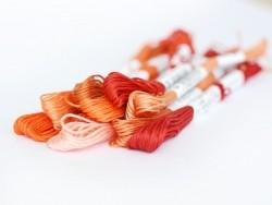 Acheter Echevette de coton mouliné de 8 m - Rouge 817 - 1,39€ en ligne sur La Petite Epicerie - 100% Loisirs créatifs