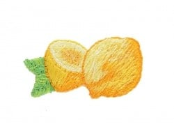 Ecusson thermocollant Citrons