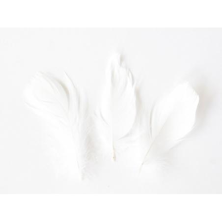 Acheter paquet de Plumes blanches décoratives - 1,29€ en ligne sur La Petite Epicerie - 100% Loisirs créatifs