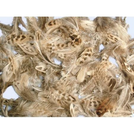Acheter Mélange de plumes décoratives - 2,39€ en ligne sur La Petite Epicerie - Loisirs créatifs