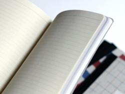 3 carnets Les fonctionnaires - Papier Tigre